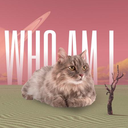 Funny Meme with Huge Cat Instagram – шаблон для дизайну