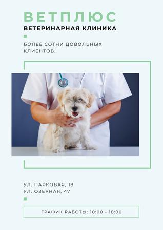 Veterinary clinic Ad with Cute Dog Poster – шаблон для дизайна