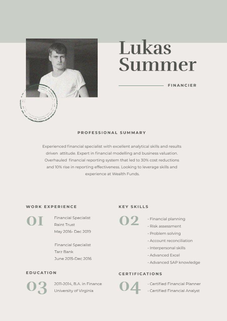 Plantilla de diseño de Financier skills and experience Resume
