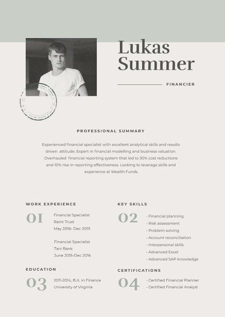 Financier skills and experience Resume – шаблон для дизайну