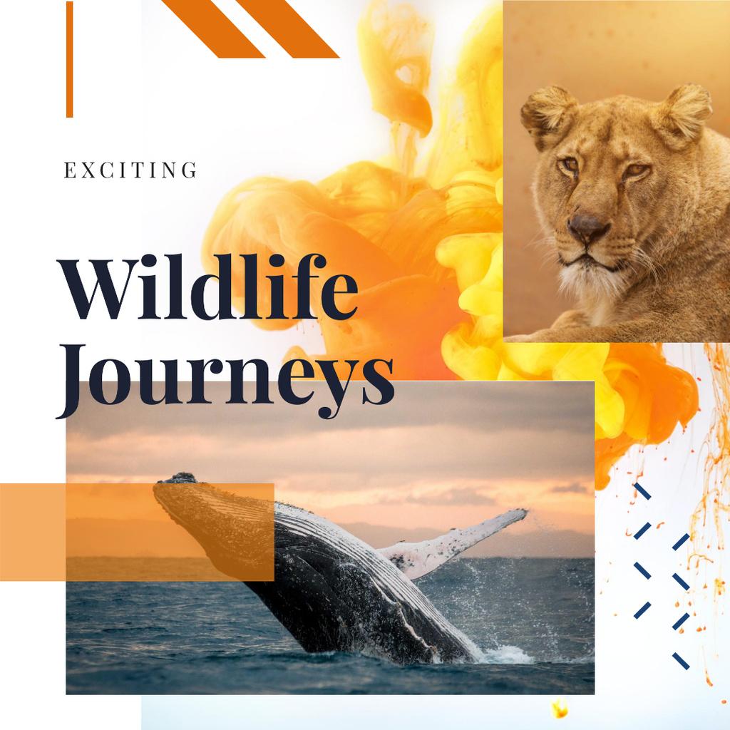 Lion and whale in natural habitat Instagram – шаблон для дизайна