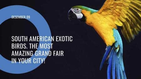 South American exotic birds fair FB event coverデザインテンプレート