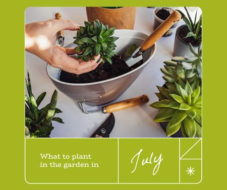 Woman transplanting Flowers at Home Facebook Design Template