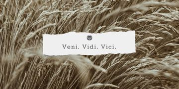 Veni Vidi Vici quote on field