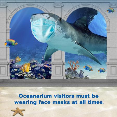 Funny Illustration of Shark in Medical Face Mask Instagram – шаблон для дизайна