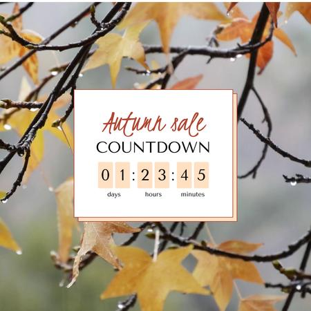 Autumn Sale Announcement with Drops on Branch Animated Post – шаблон для дизайна