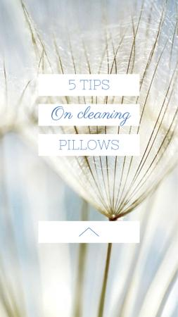 Cleaning Pillows Tips with Tender Dandelion Seeds Instagram Story Modelo de Design