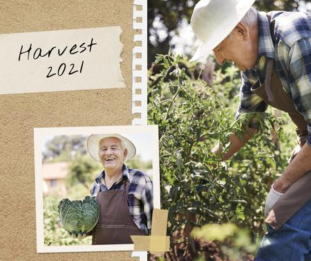 Template di design Smiling Old Man holding Ripe Cabbage Facebook