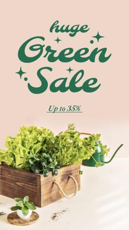 Greens Sale with Salad in Wooden Box Instagram Story Modelo de Design