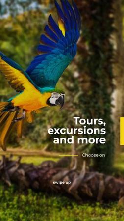 Modèle de visuel Exotic Tours Offer Parrot Flying in Forest - Instagram Story