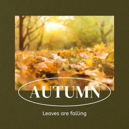 Modèle de visuel Autumn Inspiration with Foliage on Ground - Instagram