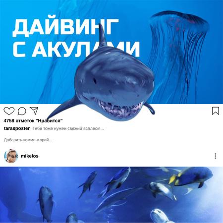Aquarium inhabitants with Shark Animated Post – шаблон для дизайна