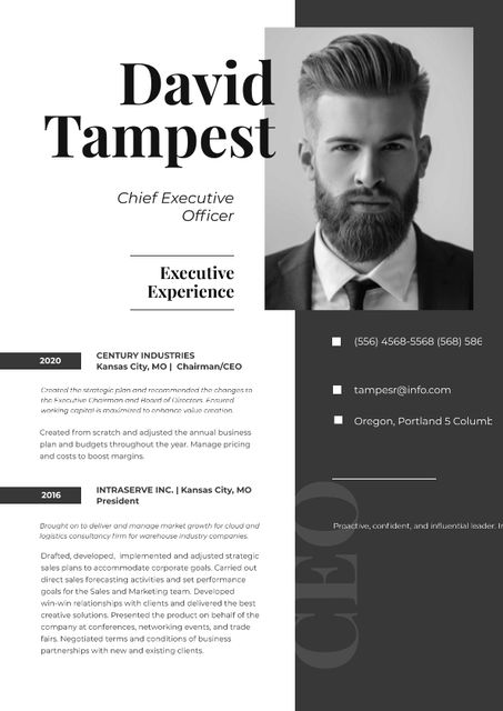 Chief Executive Officer skills and experience Resumeデザインテンプレート