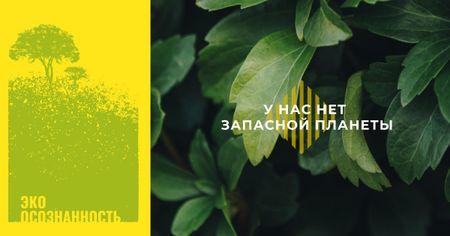 Green plant leaves Facebook AD – шаблон для дизайна