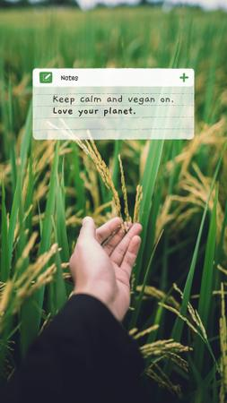 Template di design Vegan Lifestyle Concept with Green Summer Field Instagram Story