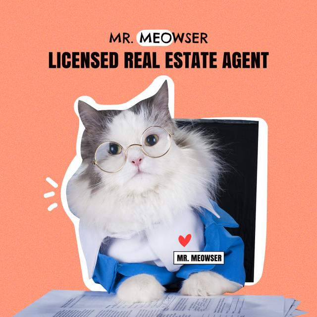 Ontwerpsjabloon van Instagram van Real Estate Services Offer with Funny Cat