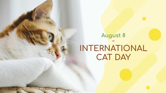 Plantilla de diseño de Cat Day greeting FB event cover