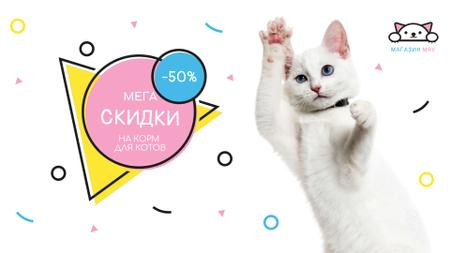 Cat Food Offer Jumping White Cat Full HD video – шаблон для дизайна