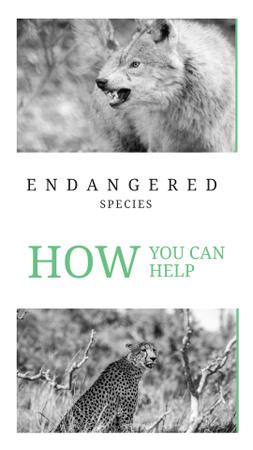Modèle de visuel Animals in Natural Habitat - Instagram Story