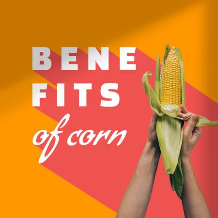 Fresh Corn in Hands Instagram – шаблон для дизайна