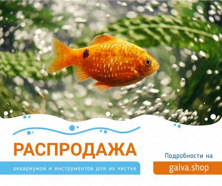 Golden Fish Swimming Underwater Facebook – шаблон для дизайна