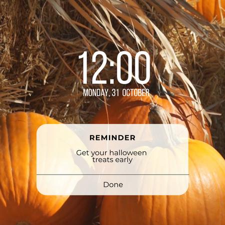 Halloween Treats Offer with Pumpkins Animated Post – шаблон для дизайна