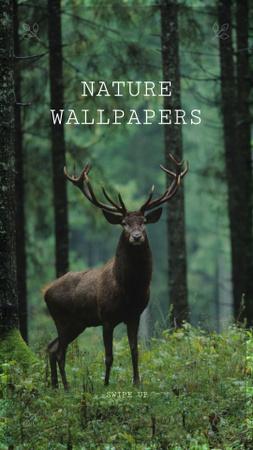 Plantilla de diseño de Deer in Green Forest Instagram Story