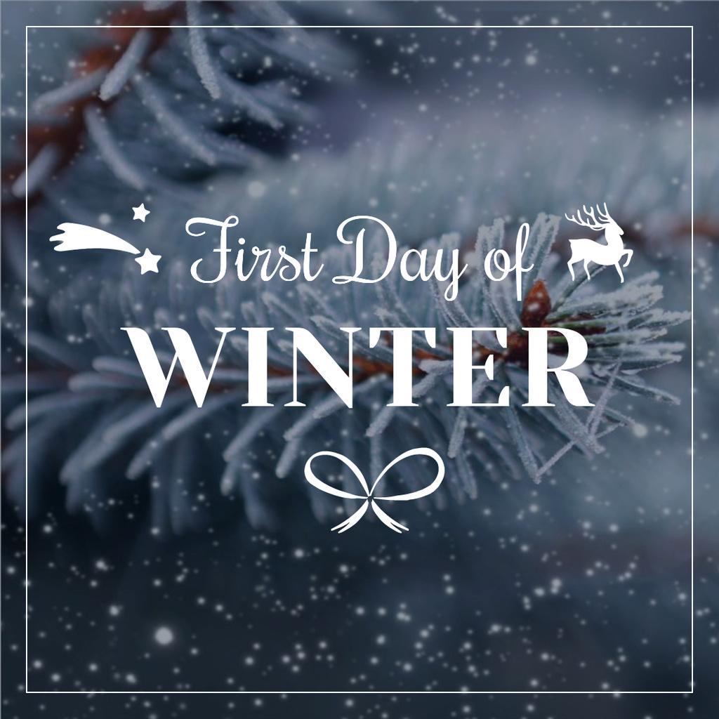 First Day of Winter with frozen fir tree branch — Crea un design