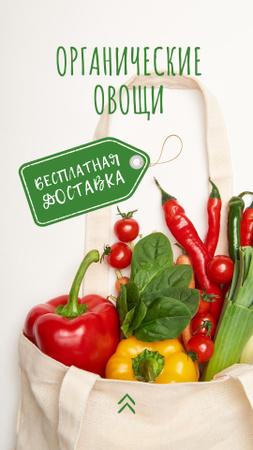 Organic Vegetables in Eco Bag Instagram Story – шаблон для дизайна