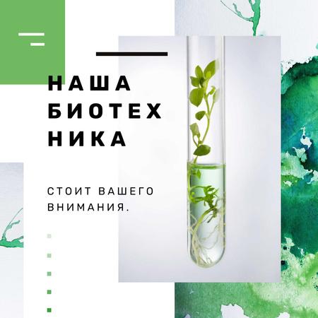 Green Plants in Test Tube Instagram AD – шаблон для дизайна