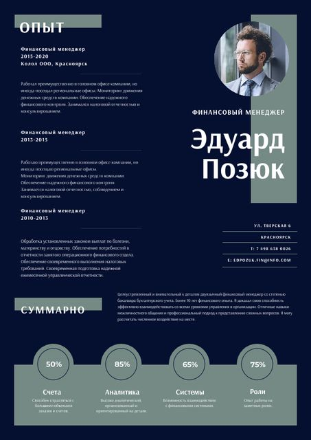 Finance Manager Professional profile Resume – шаблон для дизайна