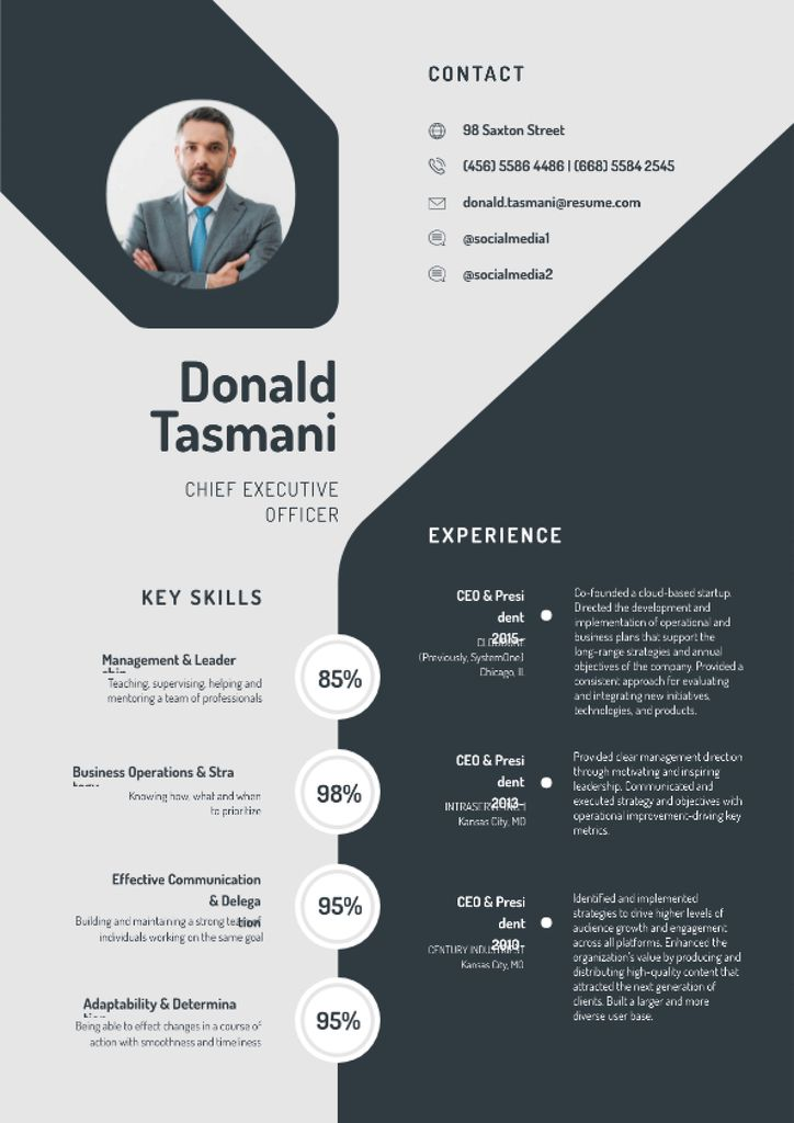 Chief Executive Officer Professional profile Resume Design Template