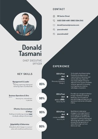 Template di design Chief Executive Officer Professional profile Resume