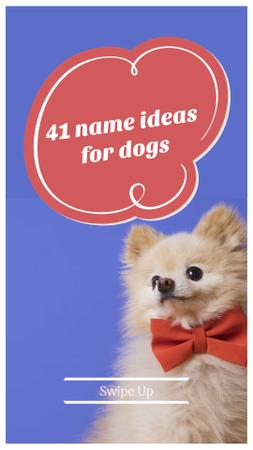 Modèle de visuel Name Ideas for Dogs Ad with Cute Puppy - Instagram Story
