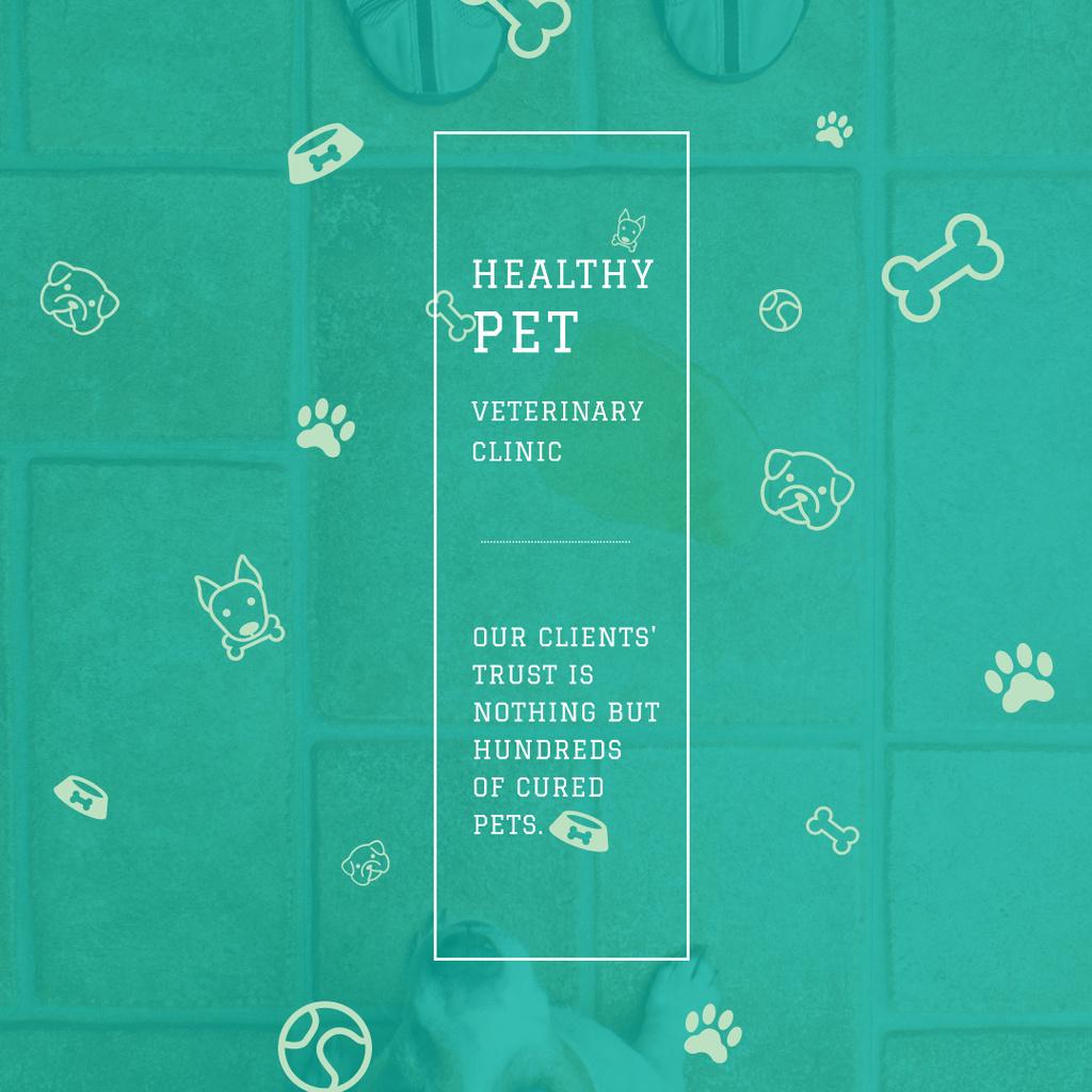 Plantilla de diseño de Healthy pet Veterinary Clinic ad Instagram AD
