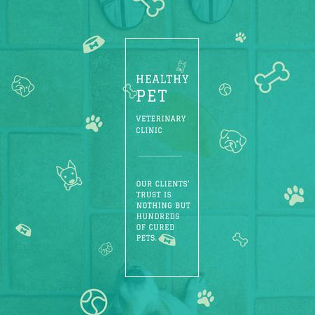 Healthy pet Veterinary Clinic ad Instagram AD Modelo de Design