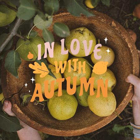 Autumn Inspiration with Ripe Pears in Bowl Instagram – шаблон для дизайну