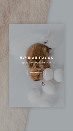 Easter Greeting Cute Bunnies with Eggs Instagram Video Story – шаблон для дизайна