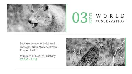 Modèle de visuel Animals in Natural Habitat - FB event cover