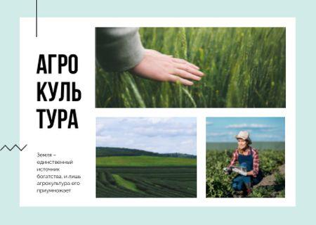 Farmer working in field Postcard – шаблон для дизайна