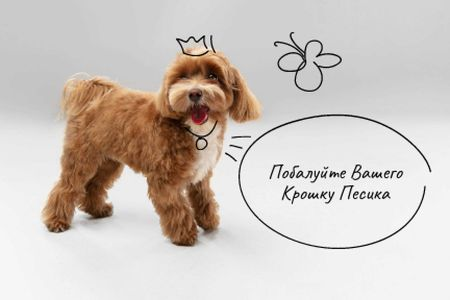 Happy Dog for Walking Services Gift Certificate – шаблон для дизайна