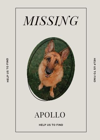 Lost Dog information with German Shepherd Flayer – шаблон для дизайну