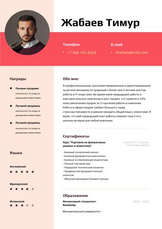 Sale Executive professional profile Resume – шаблон для дизайна