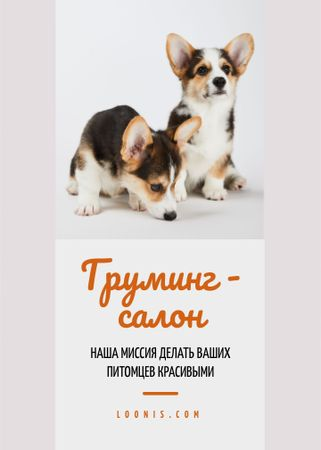 Grooming Salon Ad Cute Corgi Puppies Flayer – шаблон для дизайна