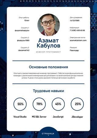 Professional Software Engineer skills and experience Resume – шаблон для дизайна