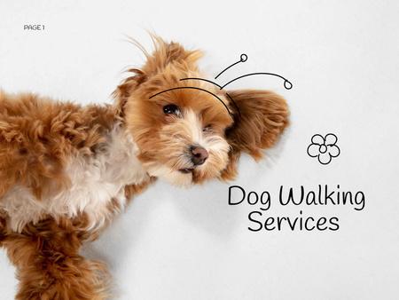 Dog Walking Services Offer Presentation Design Template