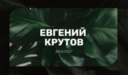 Eco Company with Green Plant Leaves Business card – шаблон для дизайна
