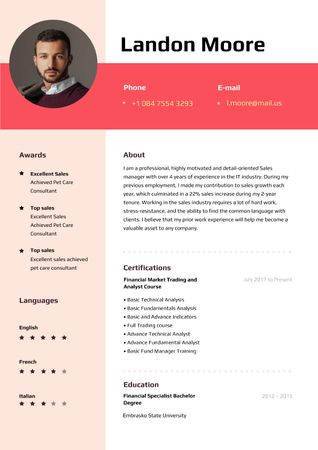 Plantilla de diseño de Sale Executive professional profile Resume