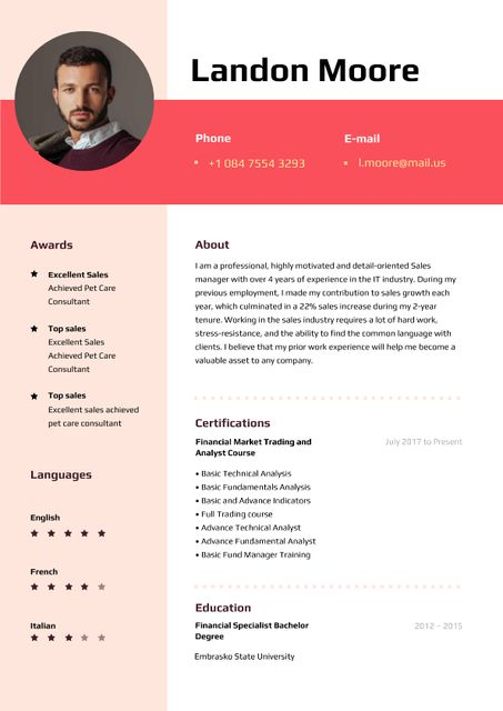 Sale Executive professional profile Resume Tasarım Şablonu