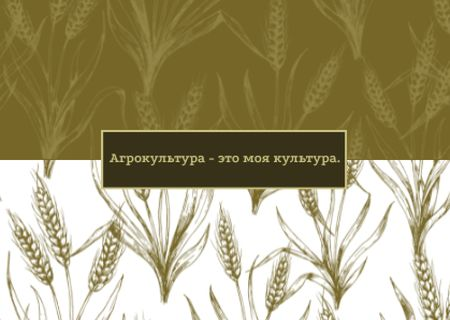 Wheat ears pattern Postcard – шаблон для дизайна